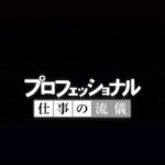 プロフェッショナル 動画